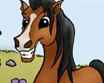 Mustang's Big Air Dream
