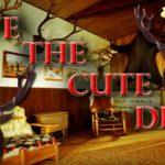 Save The Cute Deer