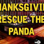 Thanksgiving Rescue The Panda