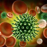 Coronavirus Slide