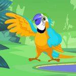 Parrot Pal Coloring